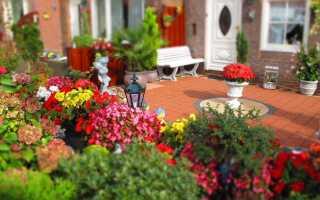 Мы украшаем террасу и сад в итальянском стиле. Дыхание Тосканы —