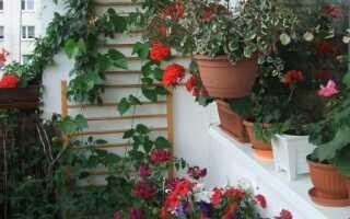 Как украсить балкон. руководство