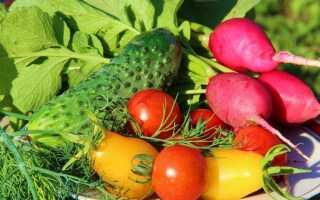 Сбор урожая овощей — график