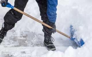 Как ухаживать за поверхностями зимнего сада?