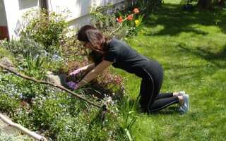Как работать в саду, чтобы избежать болей в спине