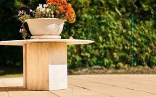 Домашний сад или природа на переднем плане (ФОТО)