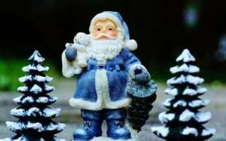 История рождественской елки, то есть корни рождественской елки