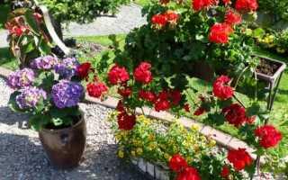Украшения для сада на заднем дворе — увидеть интересные идеи