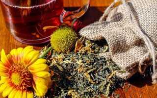 Травы, поддерживающие лечение простуды и кашля