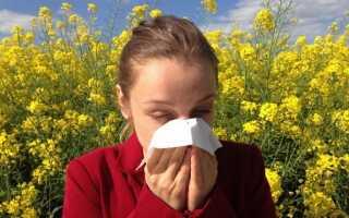 Пыльцевой календарь. Какие растения и когда они вызывают аллергию