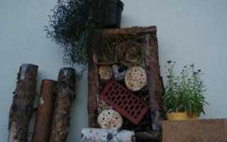 Дом для полезных насекомых: сделай сам