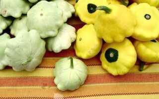 Патисон на кухне и в саду. Особенности и рецепты блюд из патона
