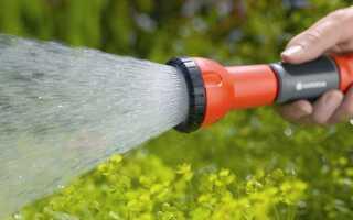 Как поливать газон —