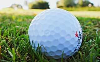 Поле для гольфа в саду. Как их устроить