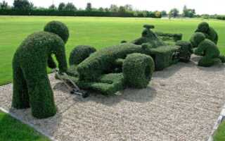 Topiary — кустовые украшения