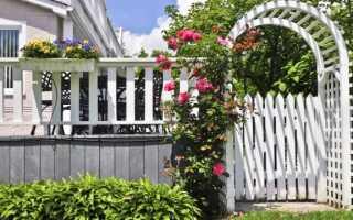 Садовая пергола — идеи для перголы