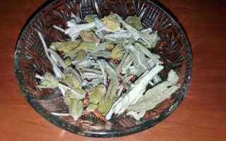 Гойник — трава для здоровья железа. Откройте для себя свойства язычника —