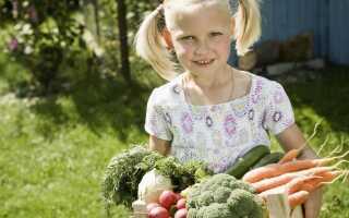 Как оформить домашний сад?