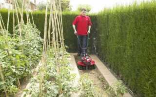 Садовые ротаторы: какую машину выбрать