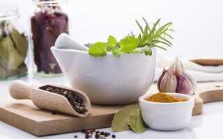 Травы, поддерживающие пищеварение — от специй до травяного чая