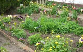 Май в саду, то есть работа в саду, которую мы должны сделать в это время