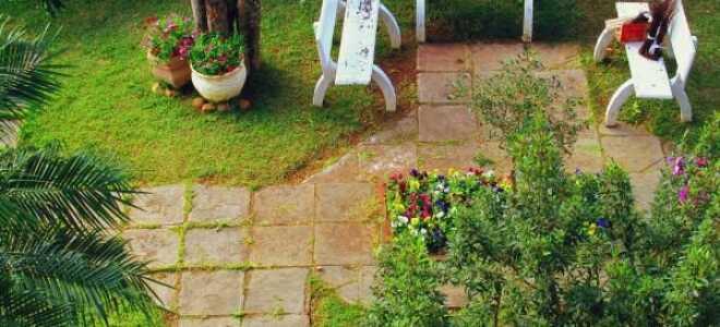 Пред весенние работы в саду. Берегите деревья и кустарники