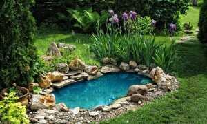 Водяная яма в домашнем саду — как построить ее из бетона