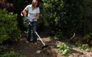 Подготовка почвы в саду на весь сезон