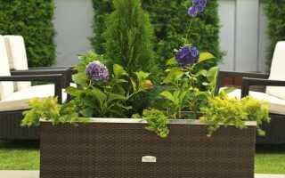 Горшки для цветов из техноратана