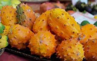 Кивано — что это за фрукт? Как правильно есть огурец кивано и какими свойствами он обладает