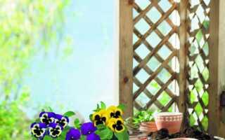 Большая неделя садоводства
