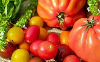 Время для томатных консервов. Рекомендуем вкусные рецепты