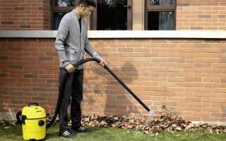 Садовые пылесосы для осенней уборки в саду и дома