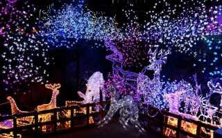 Создайте рождественскую иллюминацию в собственном саду