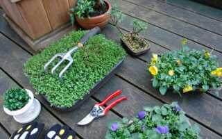 Садоводство — порядок работы