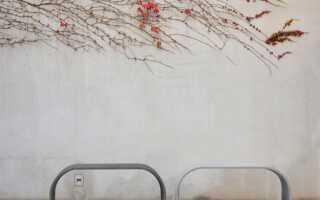 Круглогодичное оснащение сада и террасы, то есть: неплохая зима