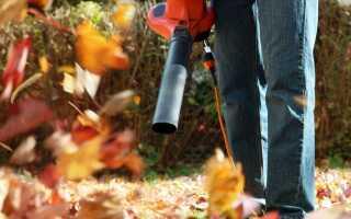 Воздуходувка или листовой пылесос. Что выбрать и что искать