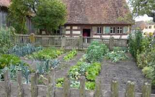 Огород в домашних условиях: как это сделать. руководство