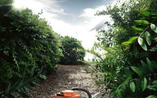 Тихая работа в саду