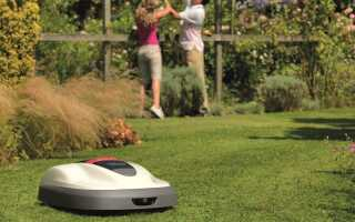 Стрижка газона — робот сделает это за вас