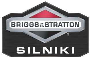 BRIGGS & STRATTON — почувствуй ОРИГИНАЛЬНУЮ СИЛУ