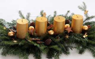 Новогодние украшения с поляны, леса и сада — сделай сам
