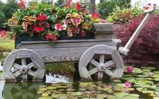 Сельский сад — какие цветы посадить, чтобы наш сад напоминал бабушкин сад