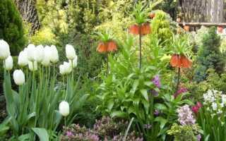 Сад в стиле кантри. Как его создать