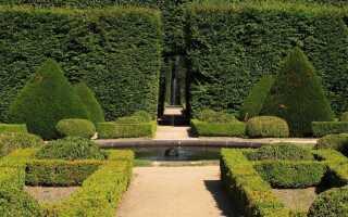 Как украсить сад во французском стиле