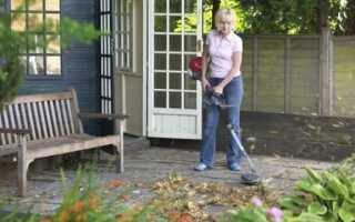 Сад осенью: как и зачем чистить сухие листья