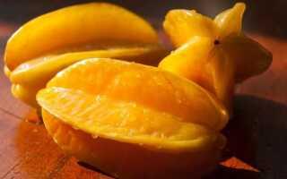 Карамбола — что это за фрукт? Как правильно есть карамболу, какой вкус и запах