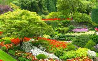 Садовый дизайн — основы