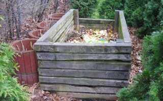Садовый компостер: способ натуральных удобрений